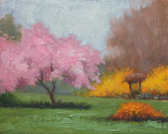 Cherry Tree and Forsythia, 8x10