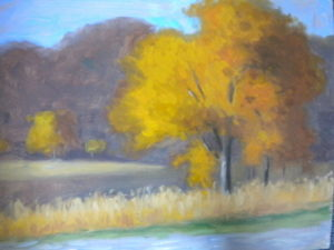 Fall at Silvermine, 12x16