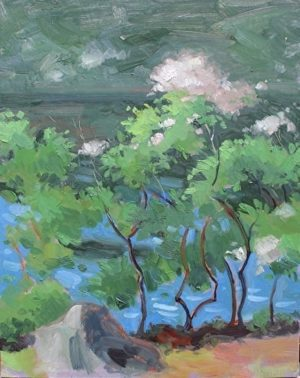 Mountain Laurel at Lake Kanawauke, 16x12