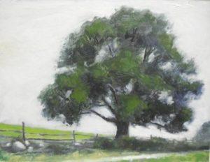 Oak at Glynwood, 11x14