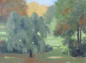Shadows in Ringwood, 12x16