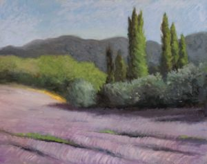 Lavender field near Roussillon